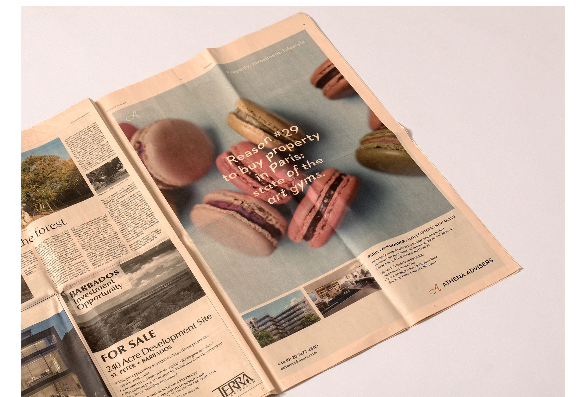 athena_newspaper_ad_02